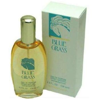 Blue Grass by Elizabeth Arden 100 ml EDP